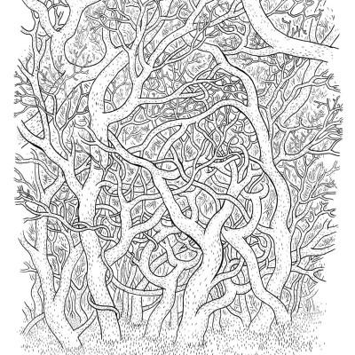 "Anders Nilsen, ""Big Questions."" (Drawn & Quarterly, 2011)"